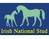 logo national stud